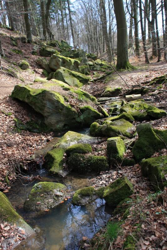 Hansteingraben Homberg (Ohm) Vulkanregion Vogelsberg