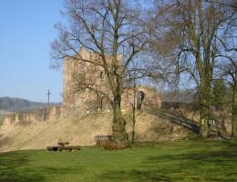 Burgruine Wartenberg in Hessen / NaturOrte