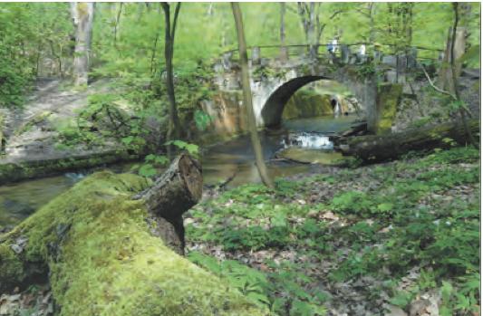 Priessnitzgrund: Wanderung für Familien in der Dresdner Neustadt