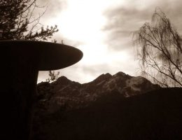 Liebesbunker Nr. 8 – NaturOrte