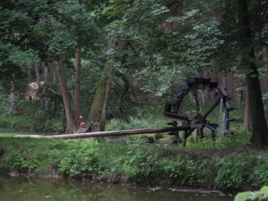 Waldnaabtal Wasserrad - naturOrte.de